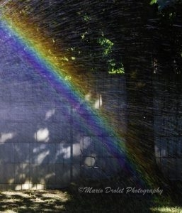 Rainbow from a water sprinkler