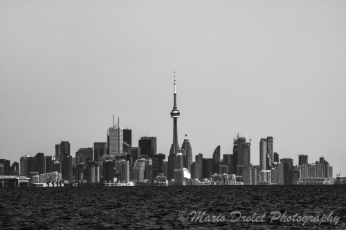 Toronto skyline from Jack Darling Park in black and white