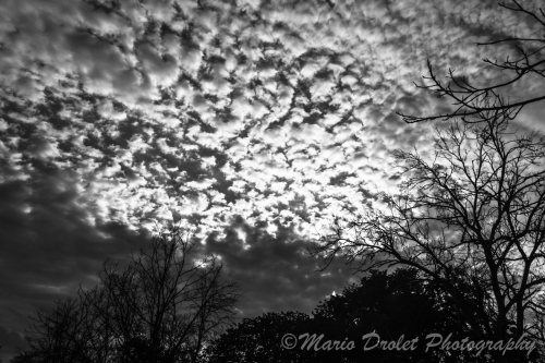 Cloudy sky over Rattray Marsh in Black and White